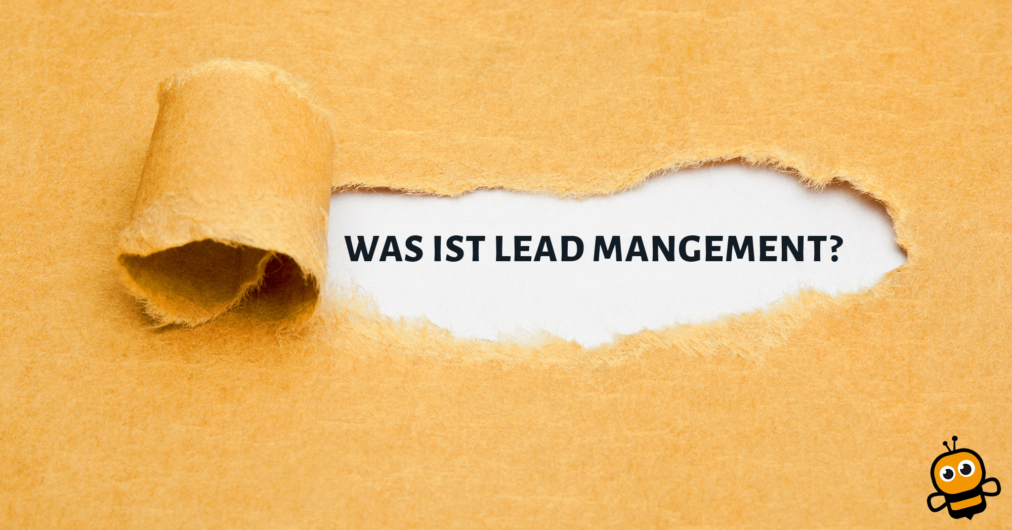 was ist leadmanagement