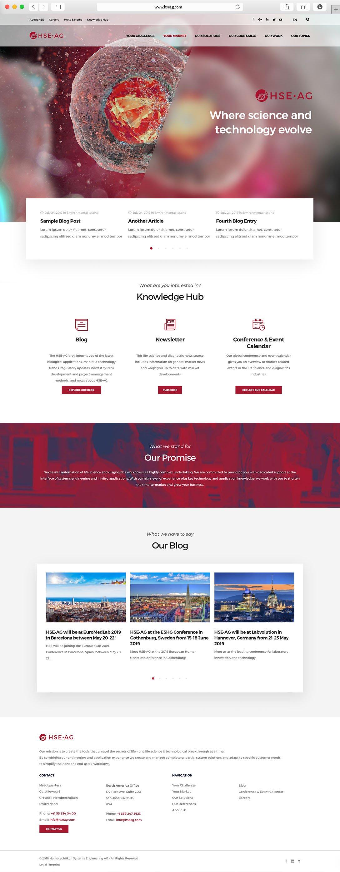 webdesign-bsp-HSE-full